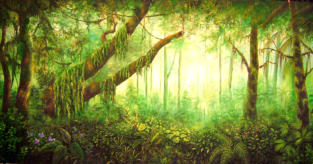 jungle themed backdrops and props for events themes unlimited